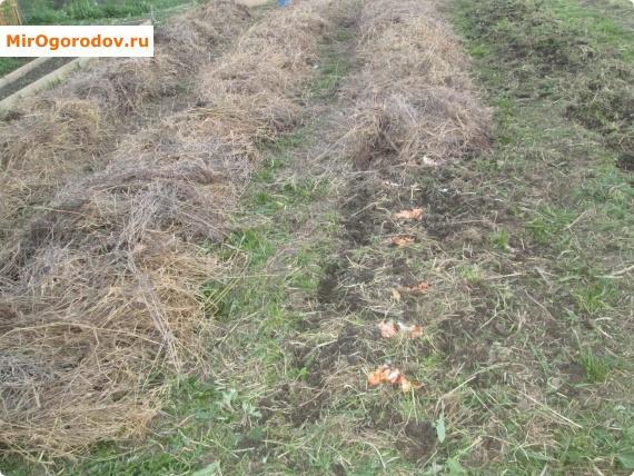 Укрытие сеном