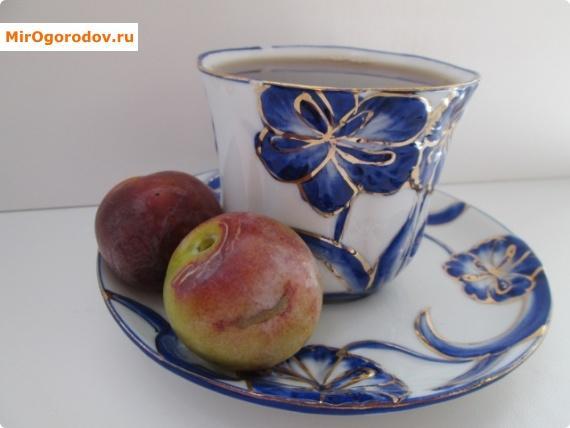 Вкусно пить чай со свежей сливой