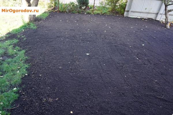 подготовленный участок для посадки травы