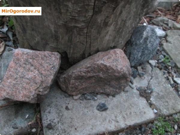 Пень-клумба обложенный камнями