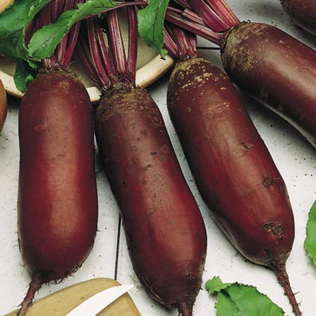 Сладкий овощ