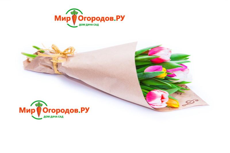 Цветная бумага для декора