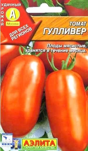 томат Гулливер